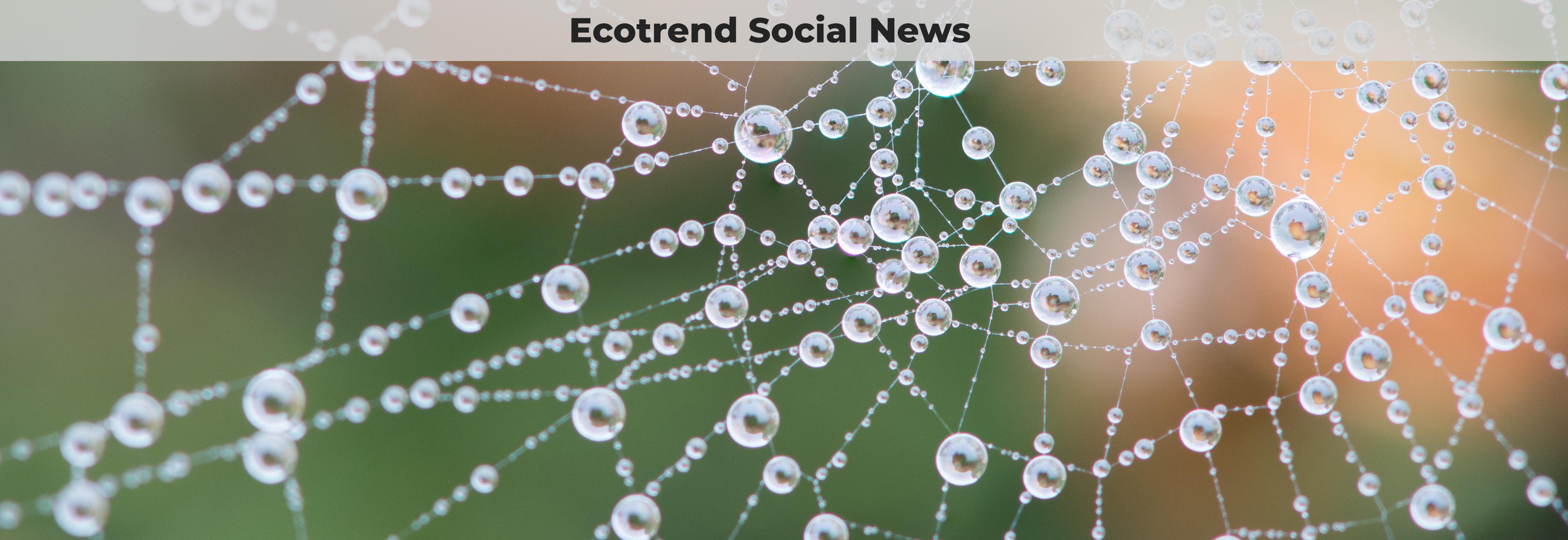 Ecotrend Blog